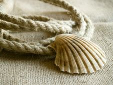 Free Seashell And Rope Royalty Free Stock Photo - 731835