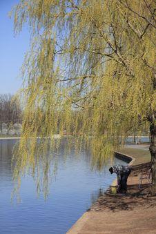 Free Spring Fishing Royalty Free Stock Images - 732679