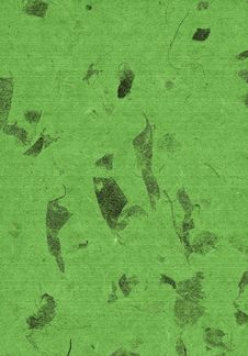 Free Green Leafs Paper, Natural, Texture, Abstract, Stock Photo - 735090