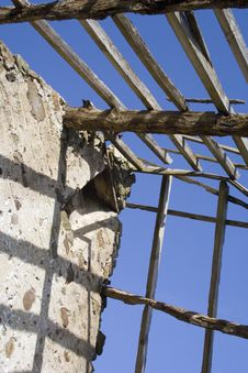 Free Derelict Roof And Rotting Timbers 1 Stock Images - 736154