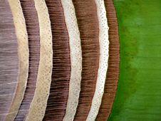 Free Royal Palm Bark Abstract Royalty Free Stock Photo - 738835