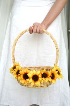 Free Woman S Hand Holding A Basket Of Sunflower Stock Image - 739861