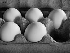 Free Five Eggs In Soft, Dim Light Stock Images - 739964