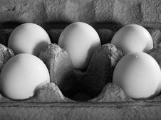 Free Five Eggs In Soft, Dim Light Royalty Free Stock Image - 739966