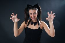Free Cat Girl Royalty Free Stock Photography - 7315877