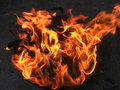 Free Flame Stock Images - 7348884