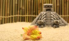 Free Flower And Pyramid On Sand Royalty Free Stock Image - 745576