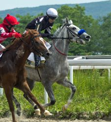 Free Horse Racing In Pyatigorsk Stock Photo - 74239810