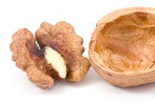 Free Walnuts Isolated Stock Photo - 7486380
