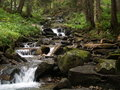 Free Stream In Forest Royalty Free Stock Image - 7492566