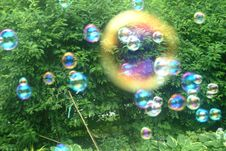 Free Soap Bubbles In The Garden Royalty Free Stock Photo - 750955