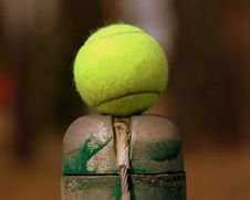 Free Tennis Ball On The Line Stock Images - 751454