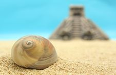 Free Sea Shell And Pyramid Royalty Free Stock Photos - 751928