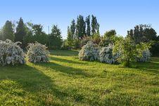 Free Park Landscape Stock Photo - 753840