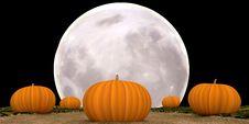 Free Halloween Moonlit Pumpkins Royalty Free Stock Photo - 75237535