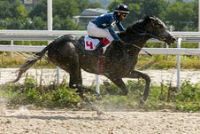 Free Horse Racing In Pyatigorsk Stock Photos - 75545113