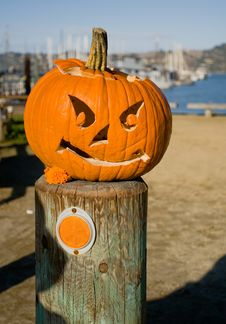Free The Halloween Pumpkin Royalty Free Stock Images - 762039