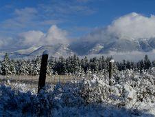 Free Fresh Snowfall Stock Photos - 763563