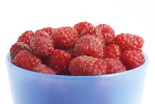 Free Raspberries Stock Images - 763904