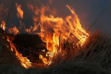 Backdraft Of Fire Royalty Free Stock Photography