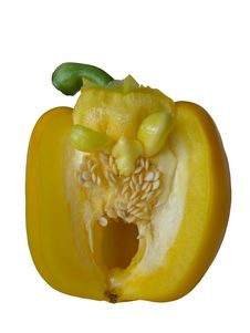 Free Yellow Pepper Royalty Free Stock Image - 767296