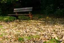 Free Autumn Bench Royalty Free Stock Photo - 767745
