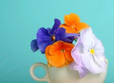 Free Pansy Bouquet Royalty Free Stock Images - 769059