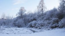 Free Winter Stock Photography - 7623422