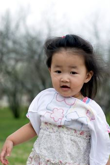 Little Chinese Girl Royalty Free Stock Images