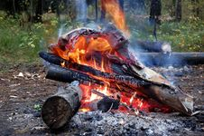 Free Bonfire In The Forest Royalty Free Stock Image - 7629886