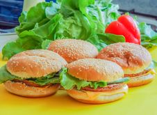 Free Beef Hamburger With Salad On Ayellow Plate Stock Image - 76366701