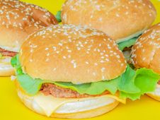 Free Beef Hamburger With Salad On Ayellow Plate Stock Photography - 76366742