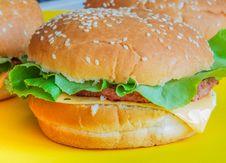 Free Beef Hamburger With Salad On Ayellow Plate Royalty Free Stock Photos - 76366758