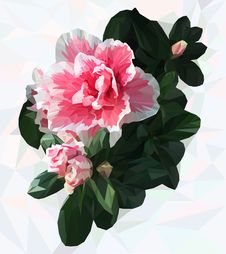 Free Azalea. Polygonal Flower. Stock Photography - 76721432