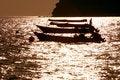 Free Fisherman1 Royalty Free Stock Image - 773696