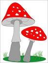 Free Mushroom. Stock Images - 777124