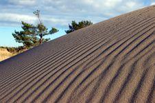 Free Dune Stock Image - 770281