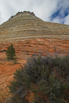 Free Checkerboard Mesa, Zion National Park Royalty Free Stock Images - 771359