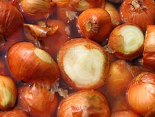 Free Onions In The Water Stock Photography - 771962