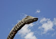 Free Dinosaur Stock Image - 772291
