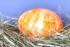Free Springtime - Eastern Eggs Royalty Free Stock Image - 772826