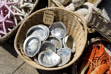 Free Seashells Being Sold By The Sea Side Royalty Free Stock Photo - 773175