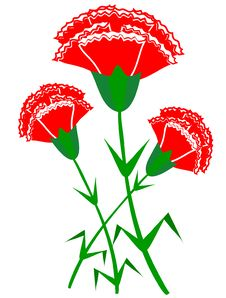 Red Carnations Stock Photography