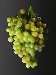 Free Green Grapes Royalty Free Stock Photo - 776035