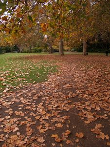 Free Autumn Path Royalty Free Stock Photos - 776188