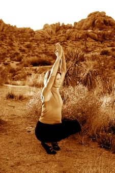 Free Balanced Desert Yoga Royalty Free Stock Photo - 776955