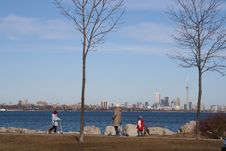 Free Panorama Toronto Royalty Free Stock Photo - 777115