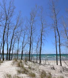 Free Great Lake Beach Royalty Free Stock Images - 777529