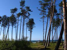 Free Path To Sea Stock Photo - 779090