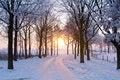 Free Winter Sunset Royalty Free Stock Photo - 7706925